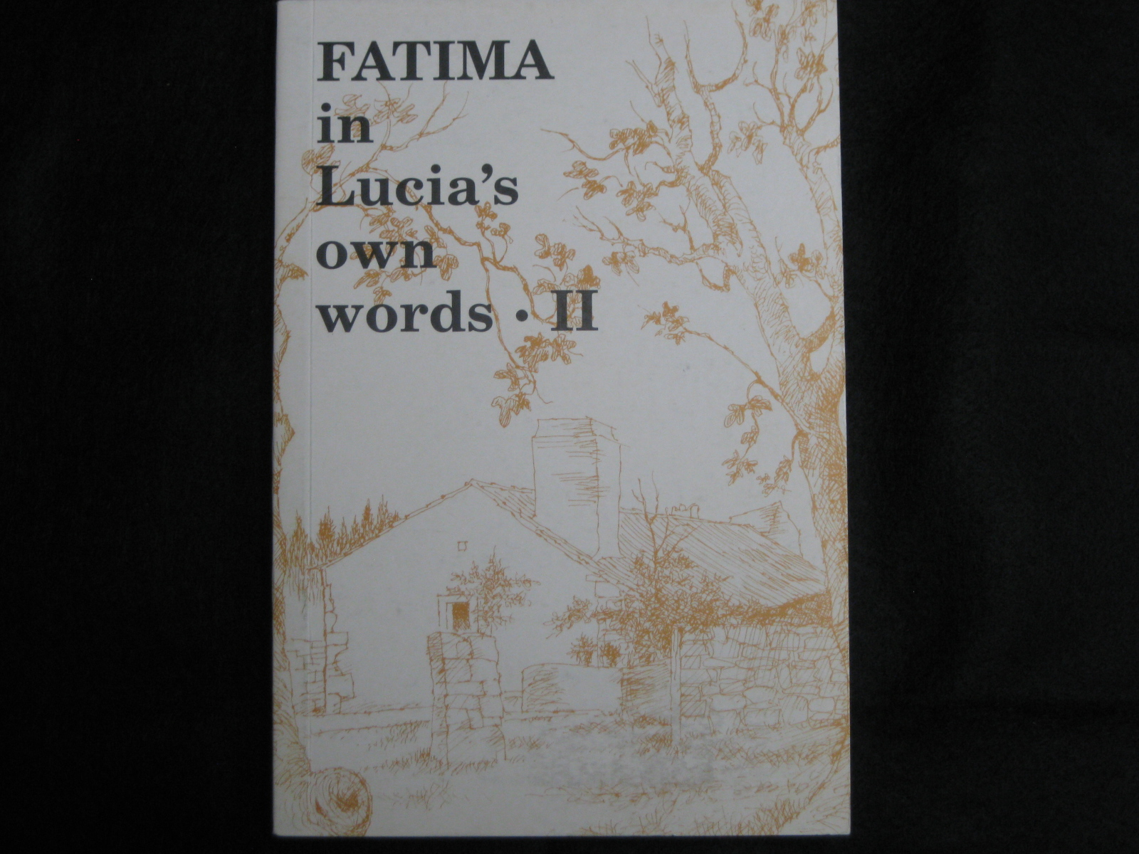 FATIMA IN LUCIA'S OWN WORDS II - Click Image to Close